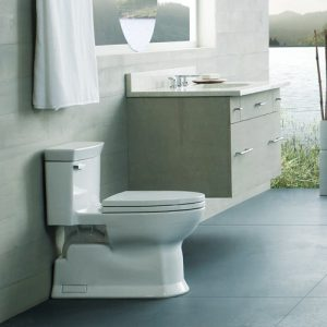 ToTo Toilet Review of Eco Soiree