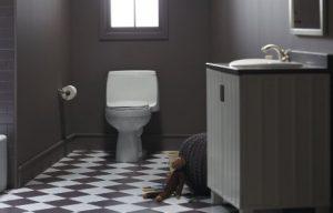 Kohler Santa Rosa Toilet Installed