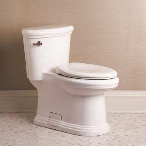 danze orrington toilet review