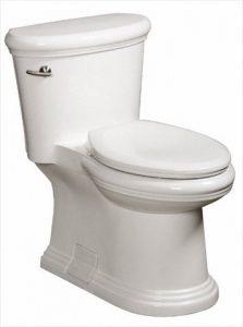 danze orrington high efficiency toilet review