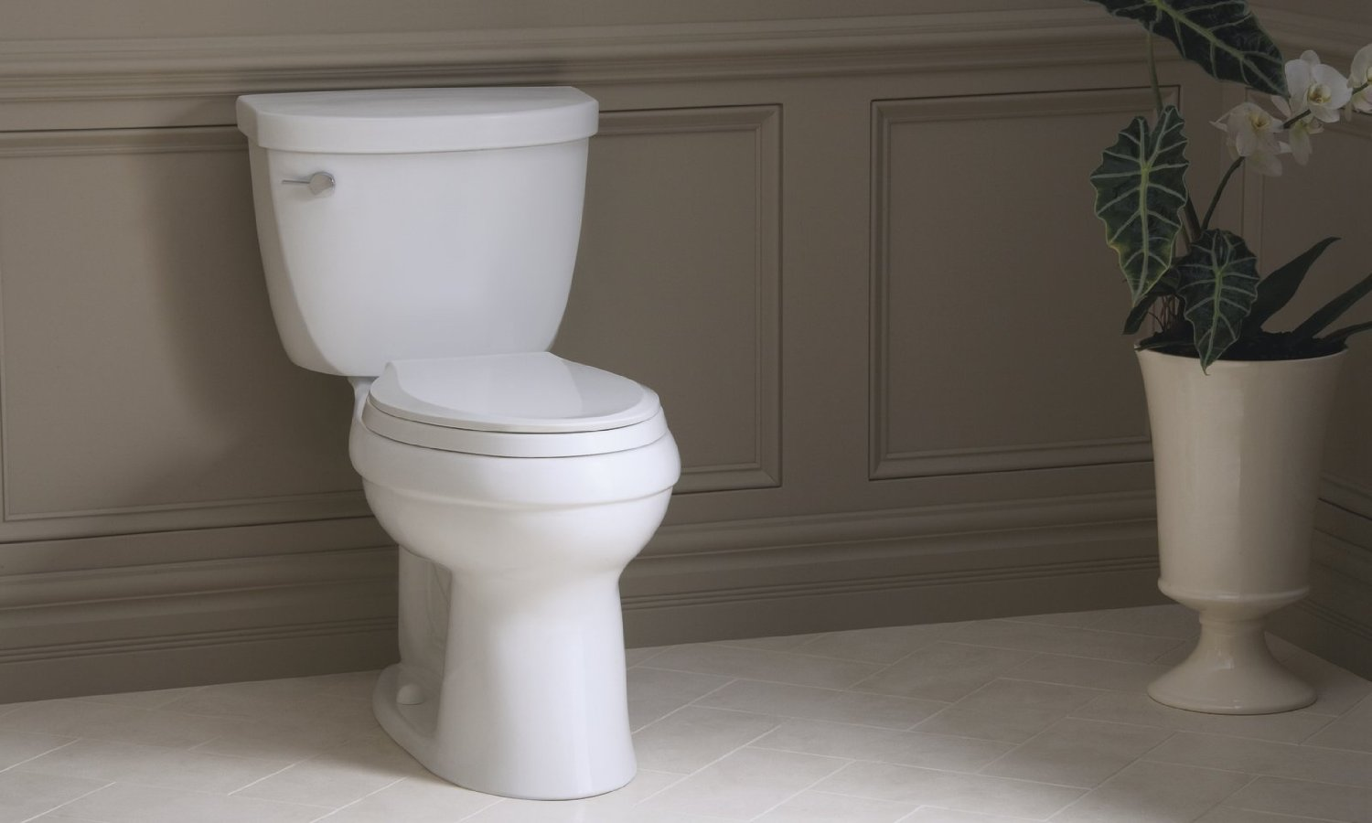 Kohler Santa Rosa >> Kohler Cimarron Comfort Height Toilet Review | Toilet ...