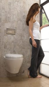 best wall hung toilets